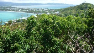Mount Luho - view point : facing south (Balabag Barangay with Bulabog Beach visible well)